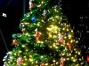 weihnachten_sankthorst